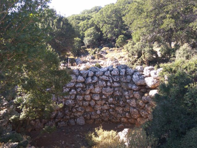 Unknown places of Crete. Historical Kroustas forest
